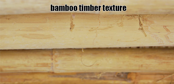the texture of bamboo timber