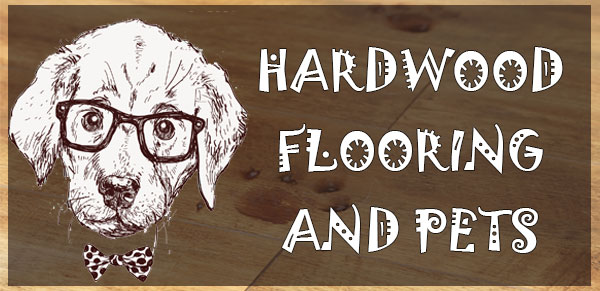 Hardwood Flooring and Pets – How Realistic Is This Idea?