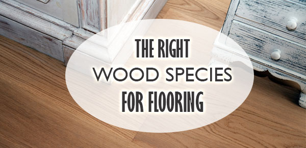 wood species used for flooring